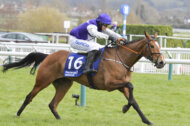 Cheltenham Festival Success for SoftCo's Mrs Milner